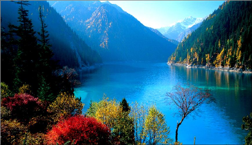 秋天来临时,秋色染林,仿佛有一枝神奇的画笔,肆意地画出绛红、桃红、暗紫、墨绿   秋天是九寨沟最为灿烂的季节,五彩斑谰的红叶,彩林倒映在明丽的湖水中,缤纷的落英在湖光流韵间漂浮,悠远的晴空湛蓝而碧净   这样的秋天,你会来吗?