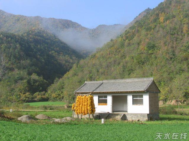 作品名称:天水秋景 摄影地点:天水市秦州区娘娘坝