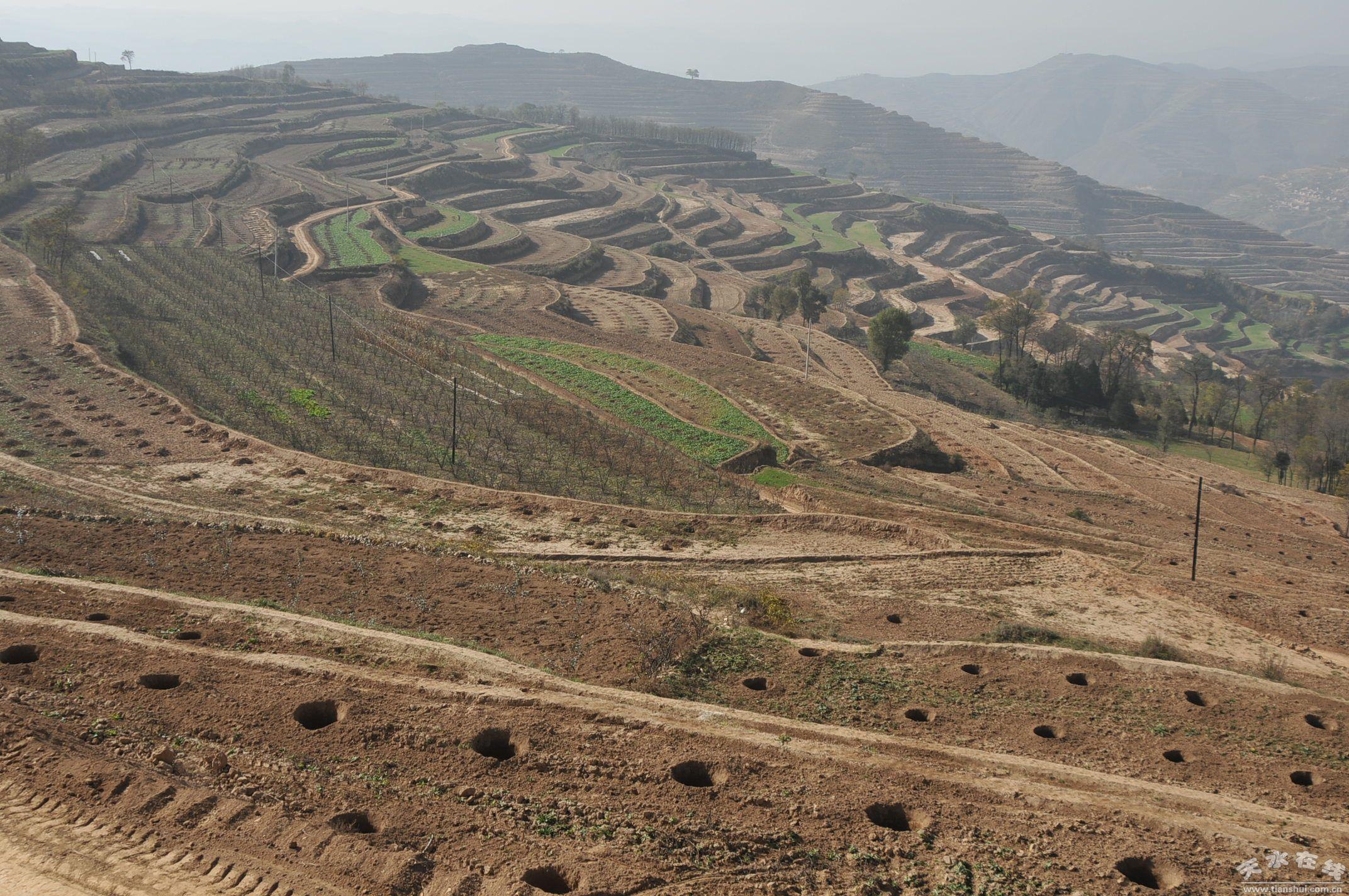 土地开发_土地开发整理项目竣工资料范本-土地开发整理项目标准