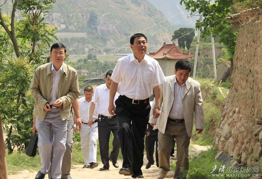 蒲军/蒲军指出,三岔乡花椒种植面积是麦积区最大的,三岔乡气候和...