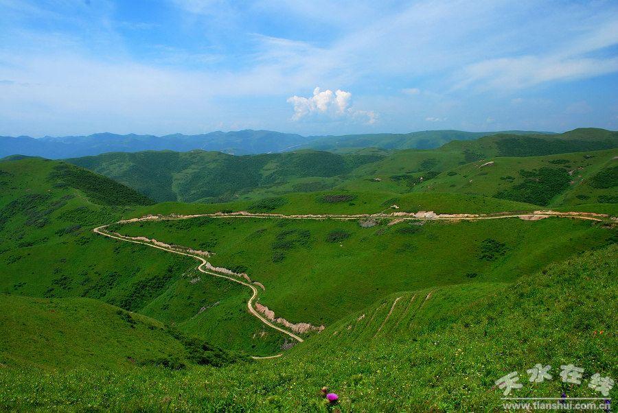 225 45 15 >> 天水摄协 天水在线走进甘谷县古坡草原摄影采风(图)--天水在线