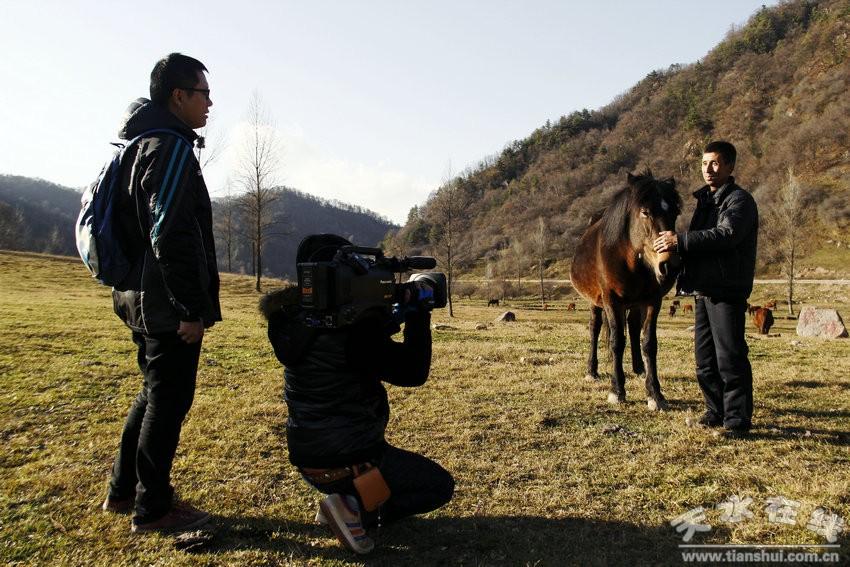 901388535_2013-11-8 11:46:34) 来源:张家川县新闻中心 作者:马 ...