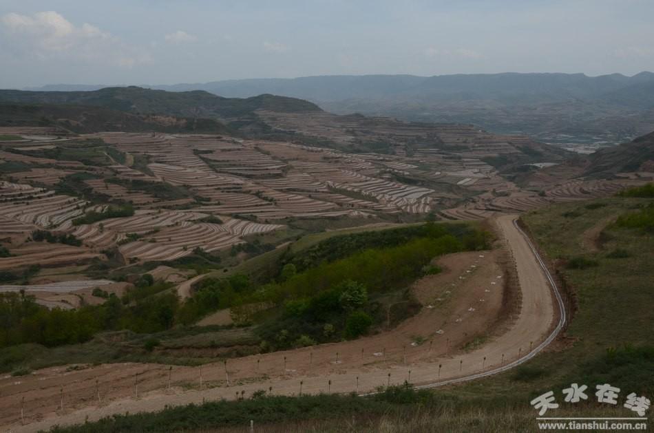 水泥路连通了全村的七个自然村并直通县城,梯田平整,核桃和养牛养羊
