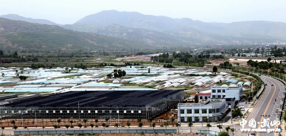 武山:蔬菜科技示范园建设助推现代农业发展(图)