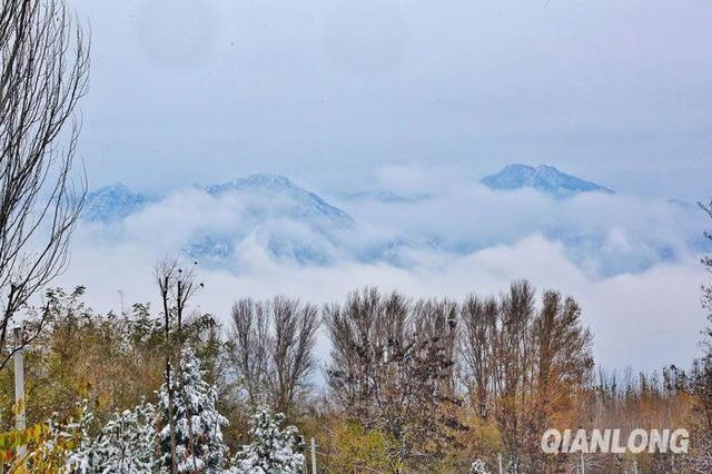图为冰雪覆盖的延庆山区.千龙网记者 陈康摄
