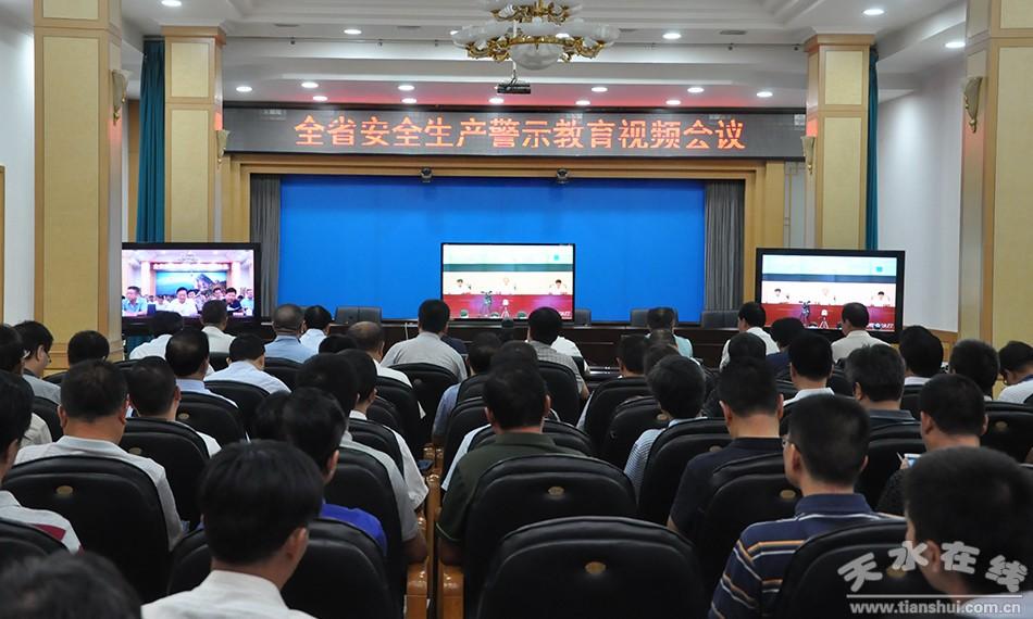 甘肃省召开全省安全生产警示教育视频会