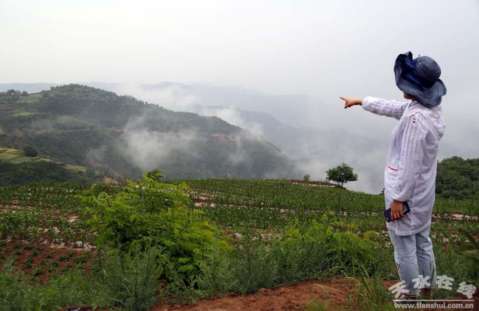 土寨新村毗邻清水县著名风景区花石崖,雄踞陇山南麓,渭水北岸,与麦积