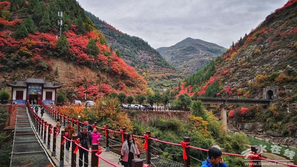 (灵官峡景区)   每到深秋,枫叶流丹,风吹叶动,十分壮观.