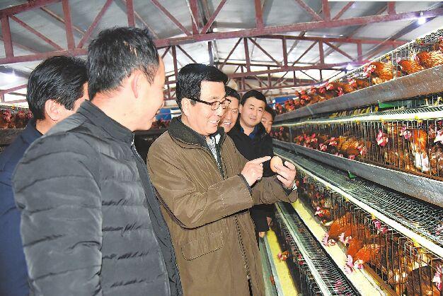 甘肃省委书记林铎在东乡调研指导工作