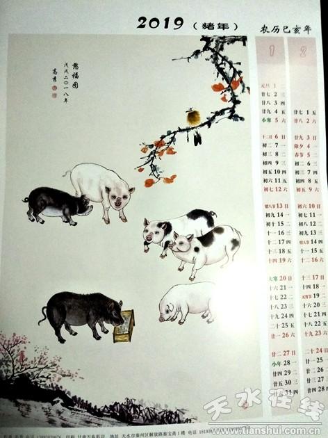 猪的美术创意画