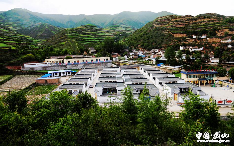 五月,走进武山县沿安乡那坡新农村,风景正好.