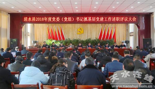 清水县2018年度党委(党组)书记抓基层党建工作成绩单