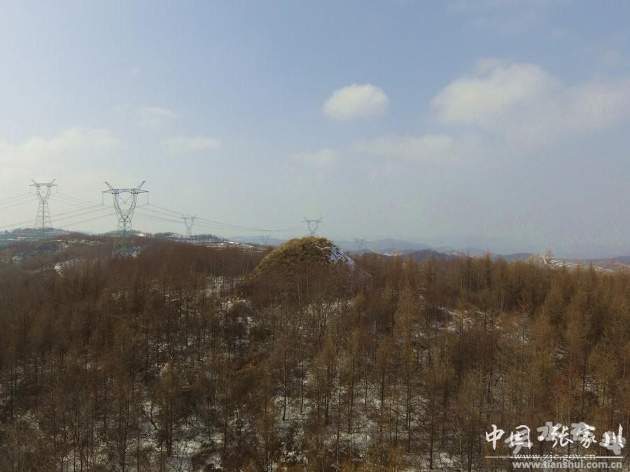 v千年千年张家川视频内丝路烽火台(图)脚疼的县境图片