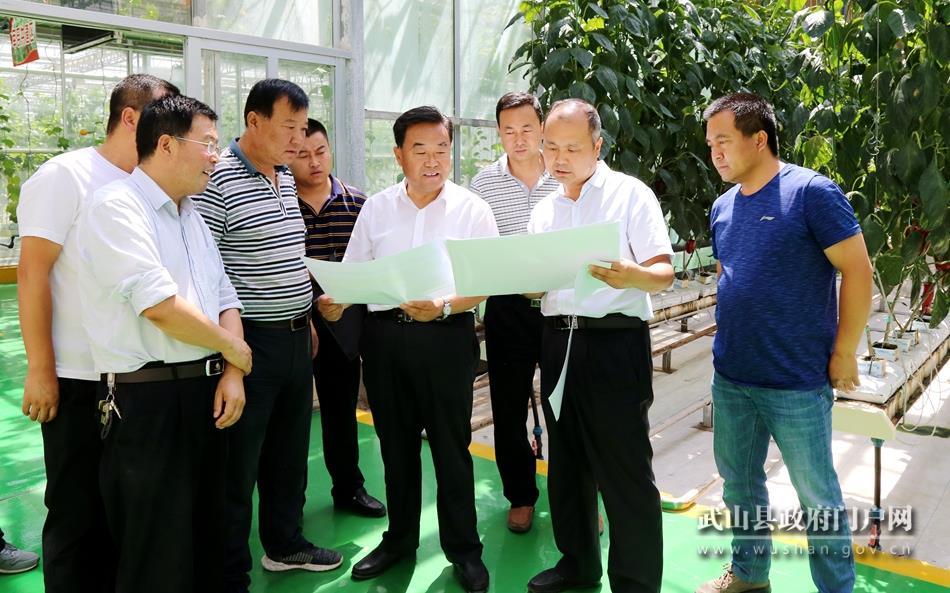 索鸿宾督查2019天水·武山蔬菜博览会筹备工作(图)