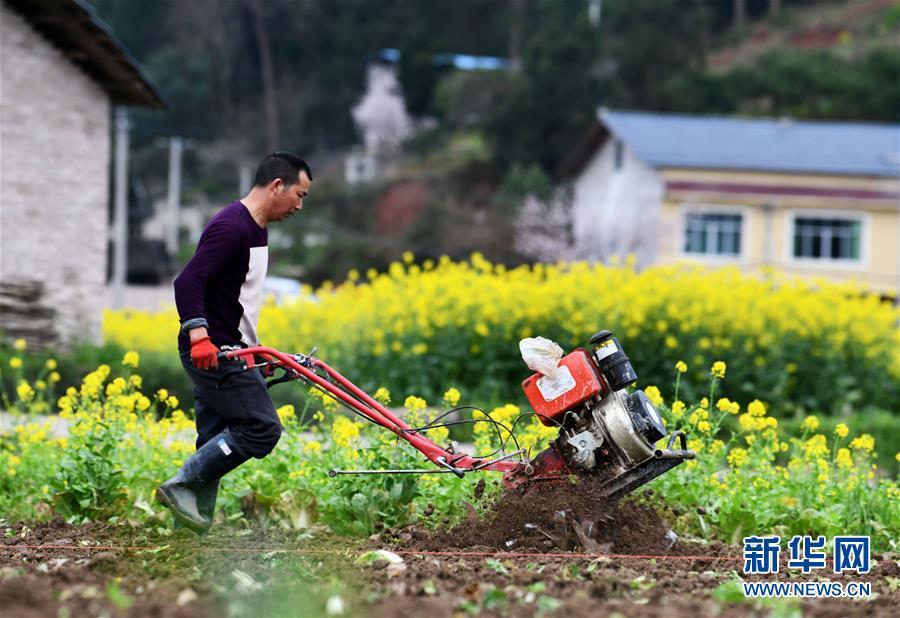 泥溪镇月新村_贵州:播洒希望耕耘春天--天水在线