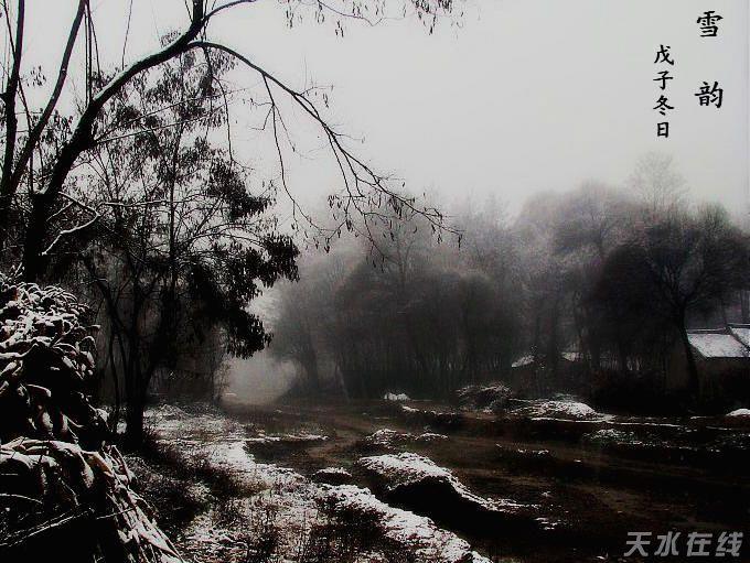 雪花飞舞的图片风景